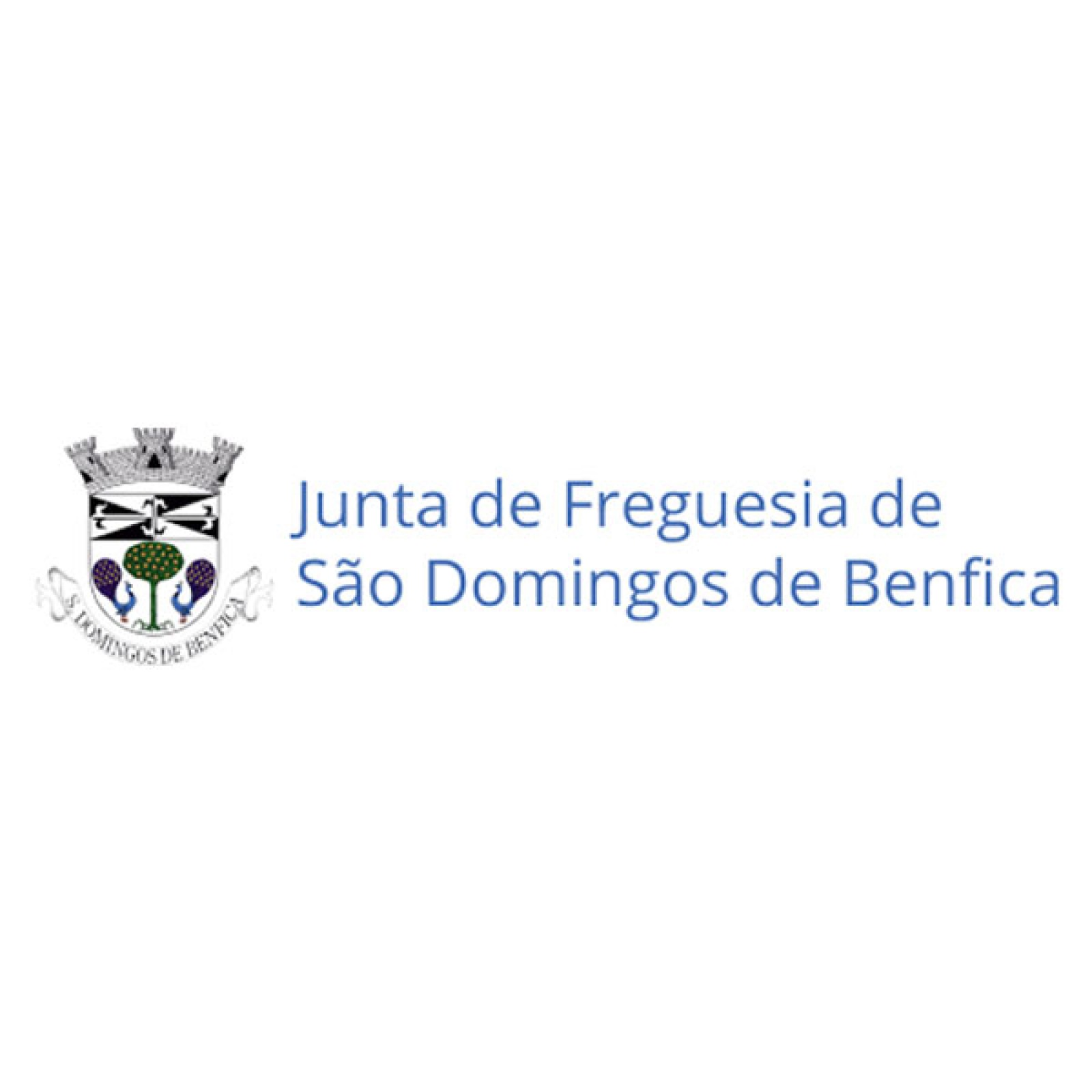 São Domingos de Benfica City Council